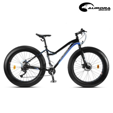 Bicicleta