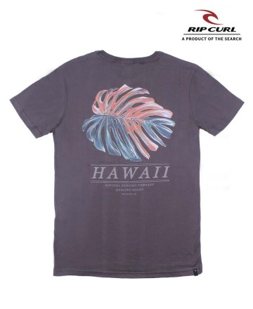 Remera Rip Curl Hawaii